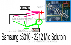 C3010 Mic Ways